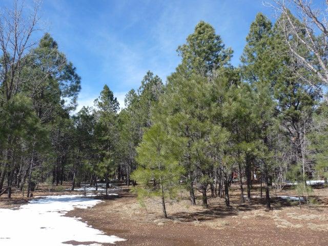 3904 Roaring Fork Drive, Pinetop, AZ 85935