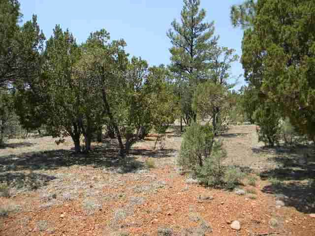 A fantastic opportunity to own a heavily treed homesite in Mogollon Estates. An enviable .91 acre cul-de-sac lot with many building sites. Wherever you build there is an abundance of trees to maintain your privacy. Custom homes abound in this private cul-de-sac. Build your dream home on this dream lot! Power and water to the lot line. Paved and maintained streets for easy access in all seasons.