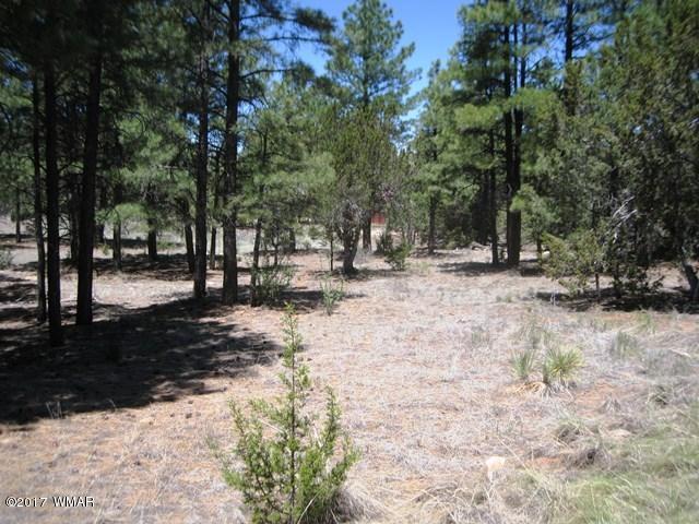 2974 Lookout Lane, Overgaard, AZ 85933