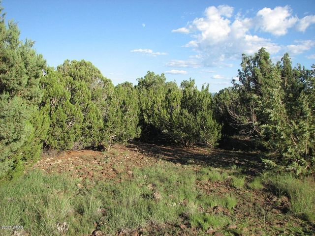 Huge 173.05 acre parcel with lots of trees; Juniper, Pinion and even a few Ponderosa pines. Build a home or place a manufactured home, power by generator or solar and haul water from the co-op well. Bring the horses and enjoy riding the wide open spaces with level to rolling terrain. Owner will carry.
