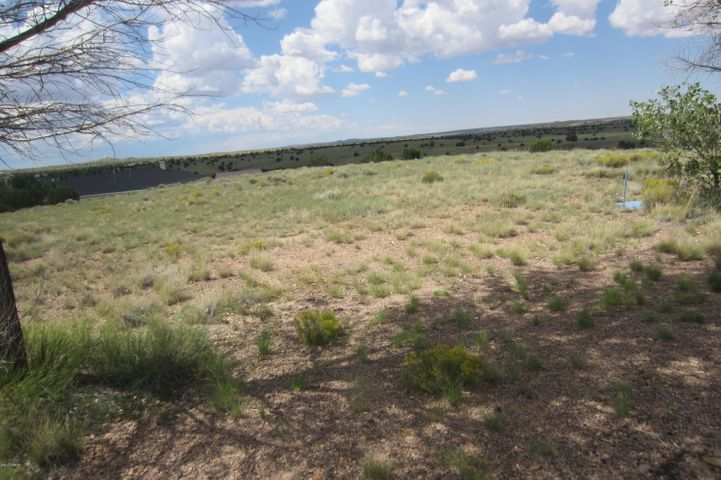 TBA Peach Court, Taylor, AZ 85939