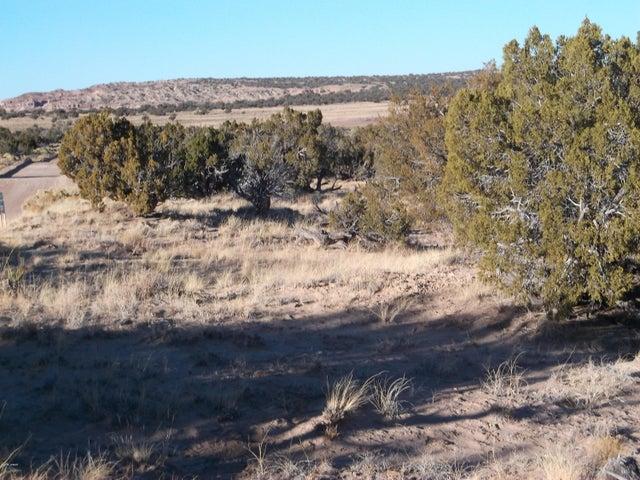 Lot 328 Woodland Valley Ranch, CR N6290, St. Johns, AZ 85936