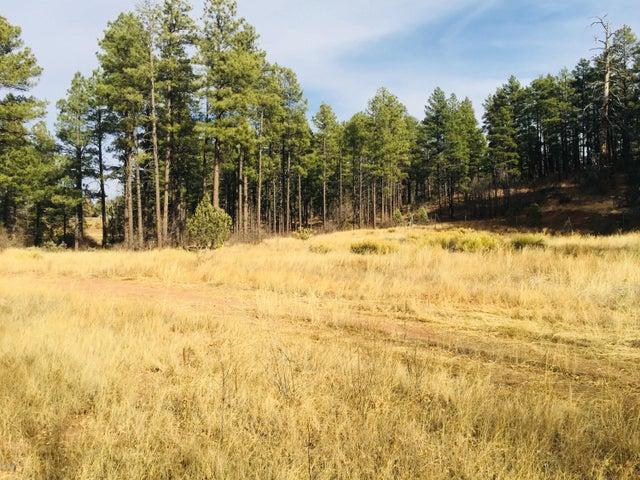 Large open meadow