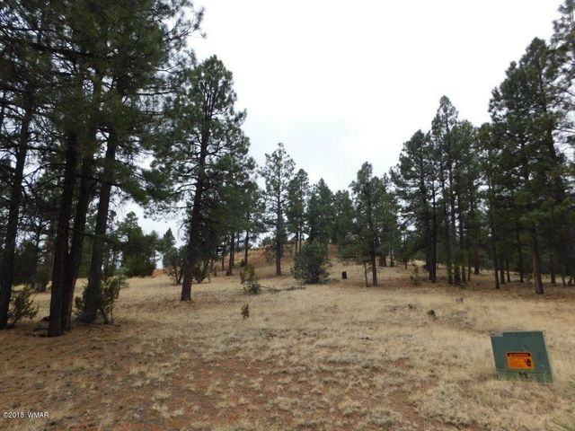Hard to find 11.34 acre parcel in the heart of Overgaard! This homesite could be your mini ranch or split into several lots after close of escrow. Underground electric, water & paved access for year round living. Variable topography would allow for a view or build on level ground parcels like this are hard to find. Add'l 8.38 acre across the road.