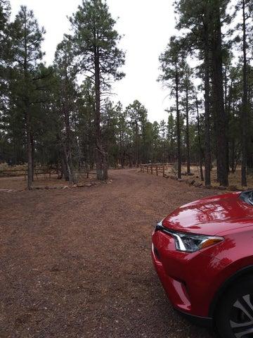 830 Backwoods Trail, Lakeside, AZ 85929