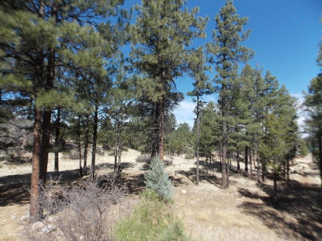 Over an acre in Mogollon Airpark-heavily treed with towering Ponderosa Pines.  Mogollon Airpark has underground utilities , paved streets, tennis courts, tie down privileges, clubhouse, and picnic area.  No time frame to start construction so buy and build later.  A great investment for your future!
