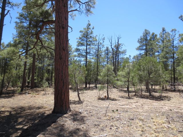 Beautiful level 5 acre parcel covered with Ponderosa Pines, many options to place your dream home or enjoy as a cool getaway from the summer heat of the valley. Many possibilities with this large parcel, come take a look and see for your self. Seller would consider dividing into 2-2.5 acre parcels if a buyer would want a smaller parcel.