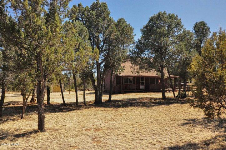 3085 Pinewood Drive, Overgaard, AZ 85933