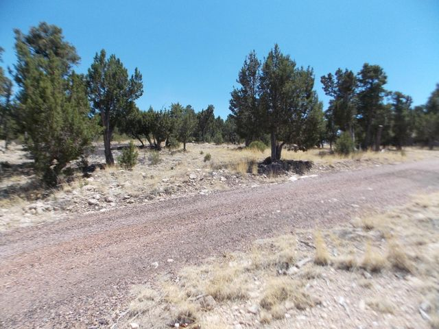 This lot is in a GATED community-site built homes only-paved streets-underground utilities-minimal HOA.  A flat lot that has INCREDIBLE VIEWS-TREES and a SEPTIC already installed.  Great time to purchase-build your custom cabin later.