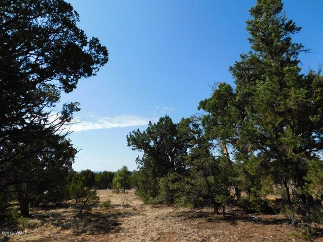 Level .80 acre building lot in the popular High Country Pines 2 subdivision. This home site is a corner lot with paved roads for easy year round access, water and electric to the lot line and offers sewer hookup so no need for a perc test or septic. Come take a look today and make it yours!
