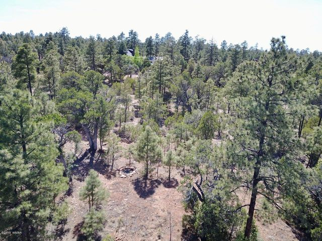 This is a rare find in Section 31: over two acres, tall pines, heavily treed, water, power, and septic system installed, ready for your cabin or manufactured home. Bring the toys or horses and enjoy the peace of mountain living! Owner may carry