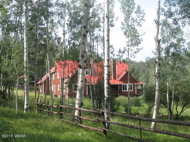 Property is blessed with an abundance of aspens.