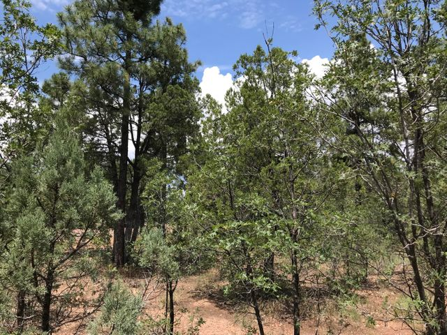 6177 Starlight Ridge Road, Lakeside, AZ 85929