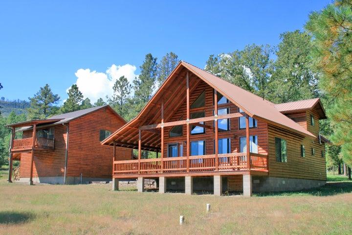Cool mountain cabin on the meadows edge