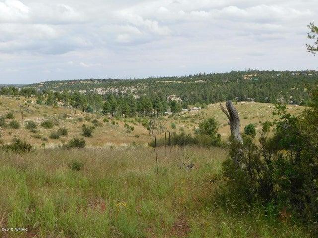 1812 Ansell Road, Heber, AZ 85928
