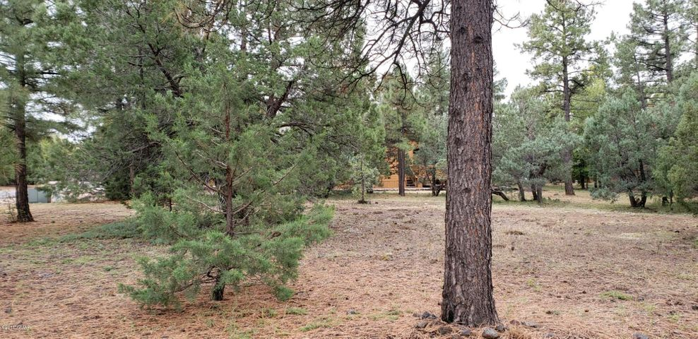 Lot 35 Rainbow View Drive, Lakeside, AZ 85929