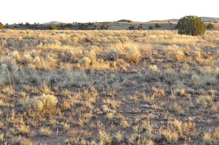 62 Ranch Dr, Concho Valley, AZ 85924