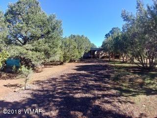 625 County Road 3144, Vernon, AZ 85940