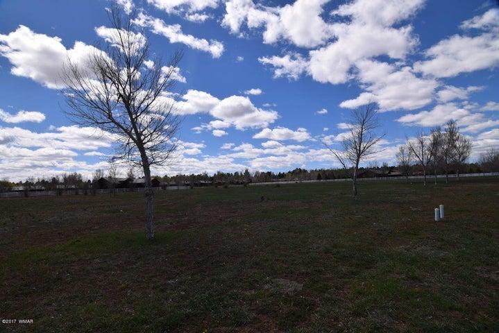 2337 QUARTER HORSE Trail, Overgaard, AZ 85933