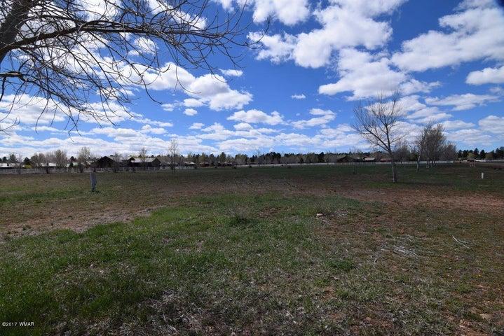 2341 QUARTER HORSE Trail, Overgaard, AZ 85933