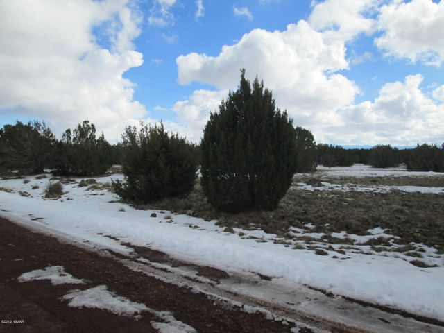 Lot 1944 Park Show Low Unit 5, Concho, AZ 85924