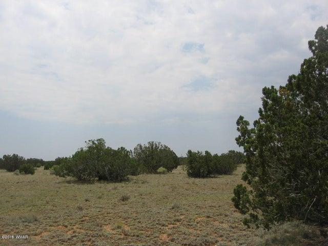 Sec 7 Chevelon Retreat (002G), Heber, AZ 85928