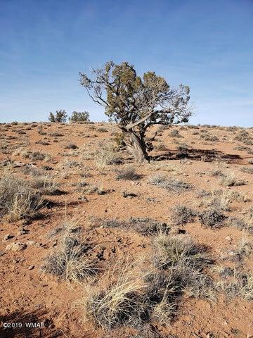 7721 Silver Creek Trail, Snowflake, AZ 85937