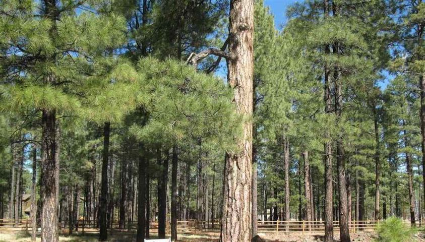 2543 Greens Peak Lane, Pinetop, AZ 85935