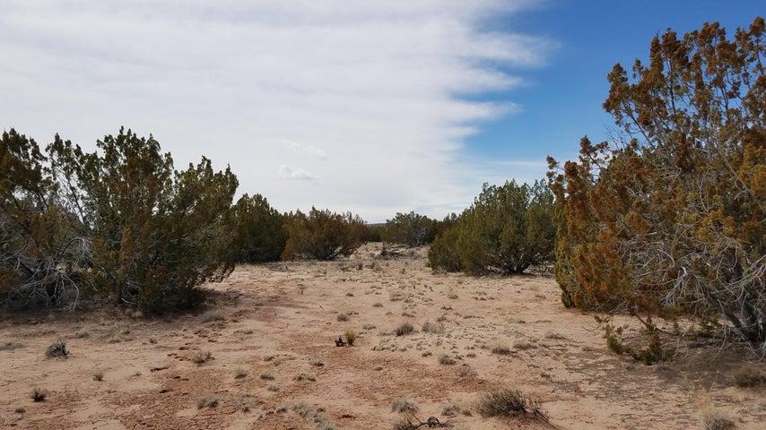 Lot 187 Red Sky Ranches, St. Johns, AZ 85936