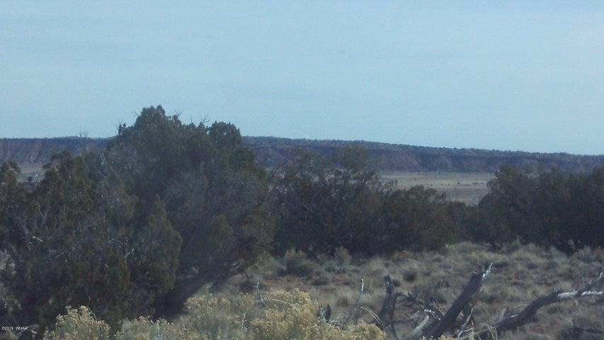Lot 97 Bonito Valley Ranch, Pearl Springs Rd, St. Johns, AZ 85936
