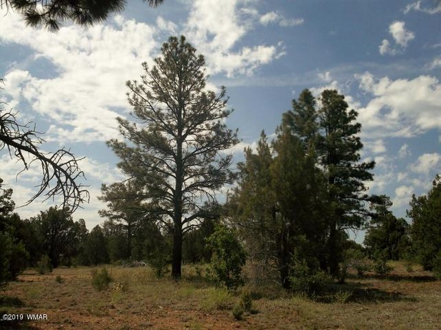 5320 State Route 260, Show Low, AZ 85901