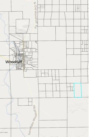 TBD Pottsville Road, Woodruff, AZ 85942