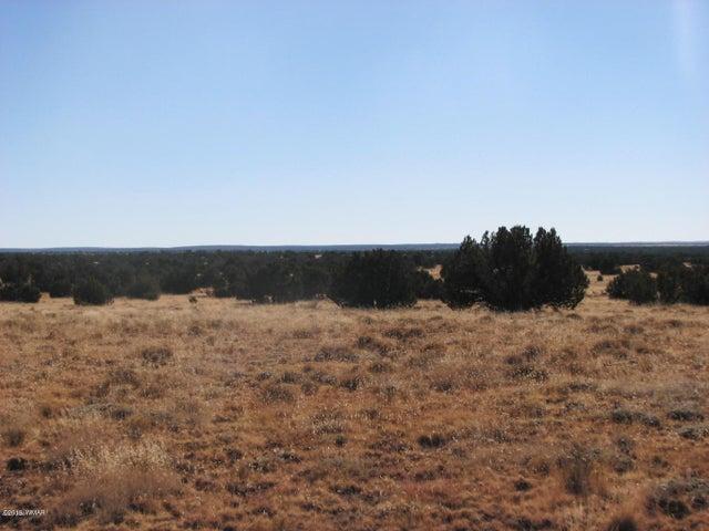 5918 Canyon View Drive, Lot 144 CCR, Heber, AZ 85928