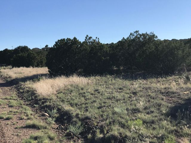 Pine Navajo - 5067, Concho Valley, AZ 85924