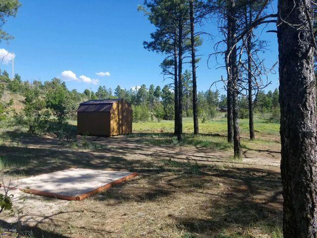 872 E Pine Meadow Lane, Show Low, AZ 85901