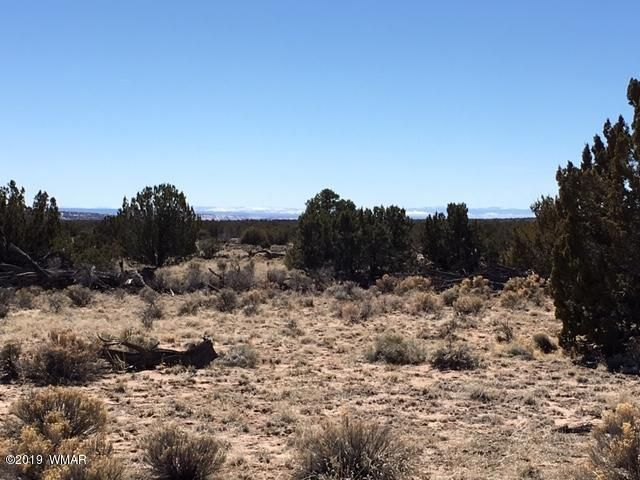 TBD Lot 85 Sierra Mountain Ranch, St. Johns, AZ 85936