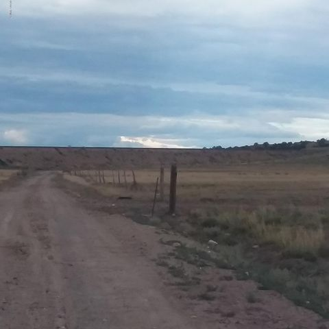 Lot 239 Carrizo Ranches, N6188, St. Johns, AZ 85936
