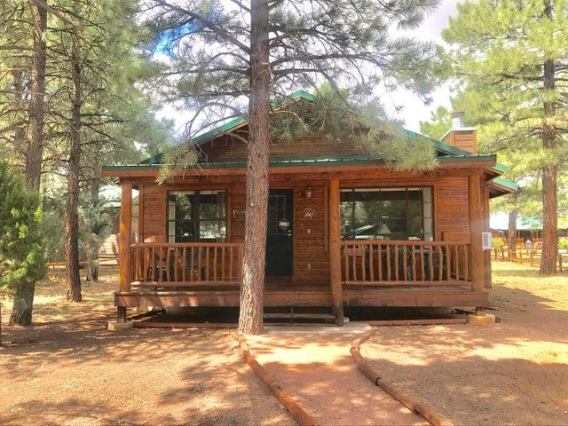 2689 Palomino Trail, Overgaard, AZ 85933
