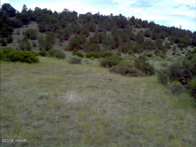 2225 COUNTY Road, Nutrioso, AZ 85932