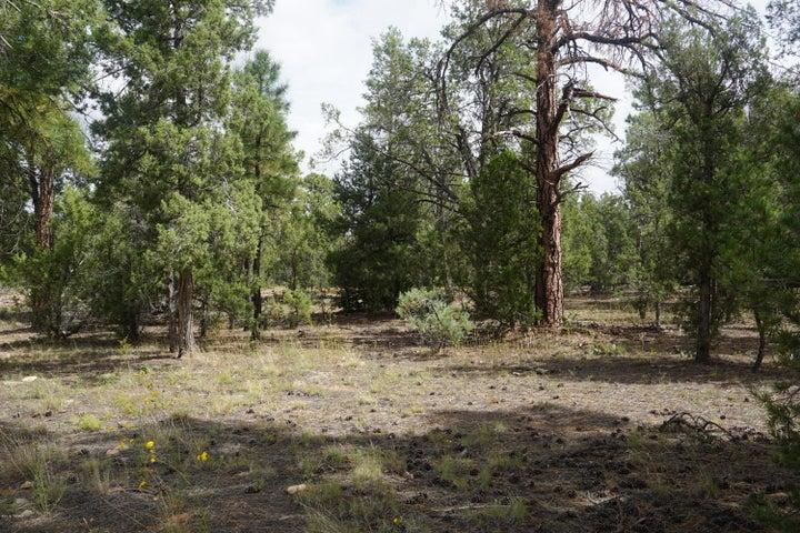 2801 N Eagle View Circle, Show Low, AZ 85901