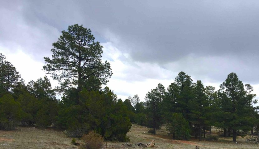 Stunning 5.82 Acre Lot perfect to Build Your Dream Home in the Heart of Overgaard, AZ.