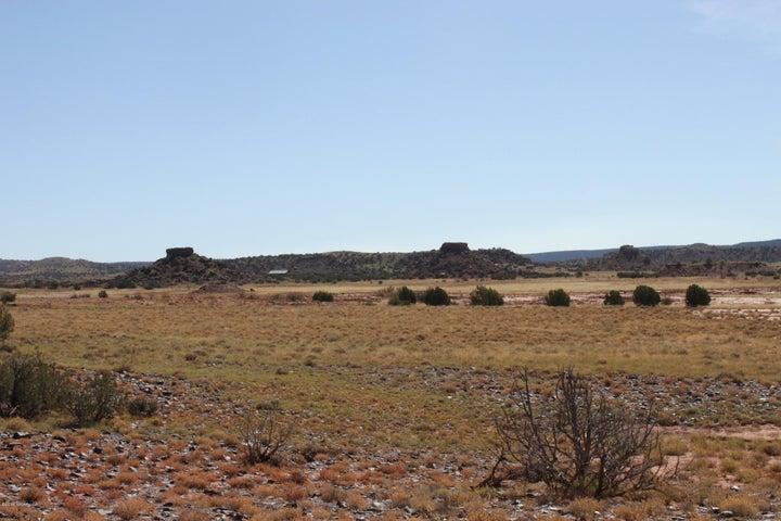 Lot 868 TBD Ranch of the White Mtns, Concho, AZ 85924