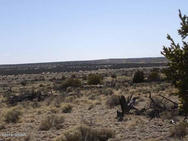 Lot 136 Woodland Valley Ranch, Kimbrough Rd, St. Johns, AZ 85936
