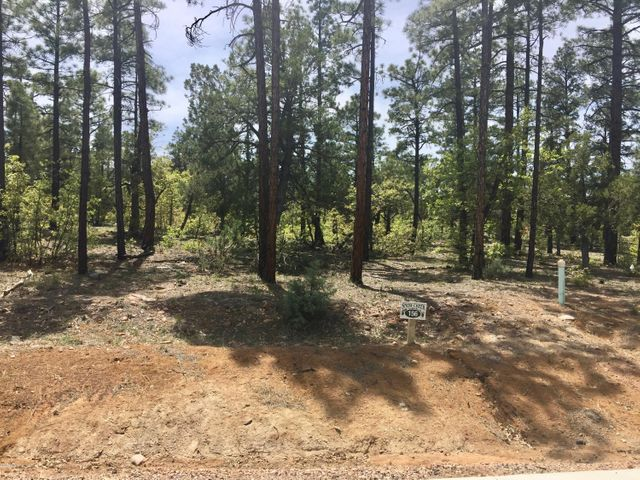 1281 Snow Creek Trail, Show Low, AZ 85901
