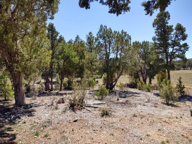 TBD Meadow Lane, Show Low, AZ 85901