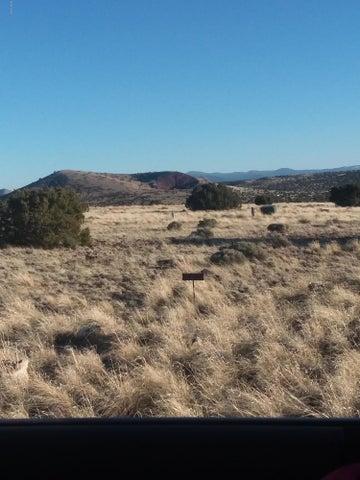 20 CR 5081, Palmer DR, Concho Valley, AZ 85924