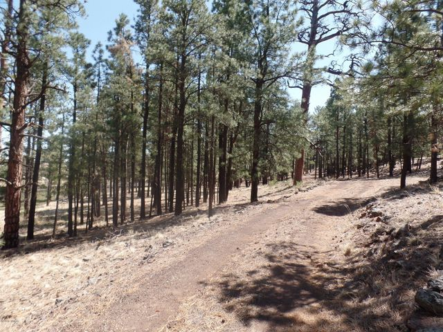 38697 State Route 373, Greer, AZ 85927