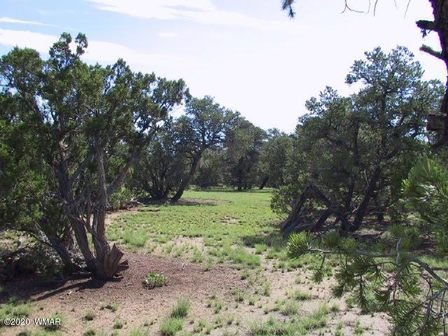 23 Buckboard Trail, Quemado, NM 87829