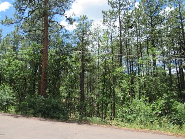 2826 S Cougar Lane, Pinetop, AZ 85935