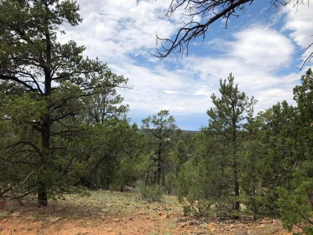3640 Green Forest Drive, Overgaard, AZ 85933